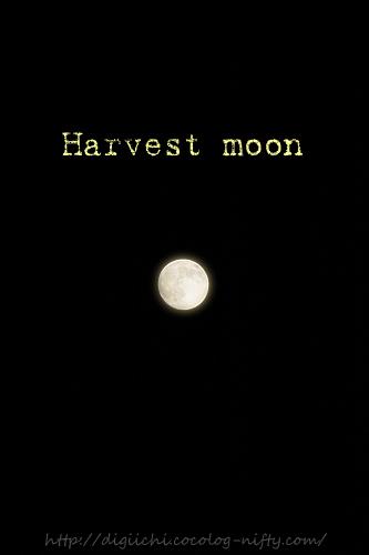 Photo_moon_1